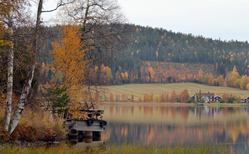 (Svenska) Save-the-date till Svenska Kohanätverkets digitala möten under hösten 2021